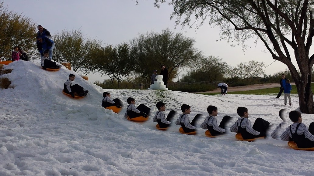 Ice-Now-Sledding-Las-Vegas-HOA